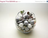 Sale: 15% off Terrarium - a black, white, & shades of grey - a succulent terrarium with silver bells and  glitter spheres