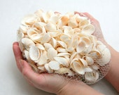 Supply: Two pounds of white seashells
