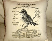 French Bird on a Branch Pillow, Antique Paris Inspired Cushion, French Words Music Concert, Vintage Graphic, Neutral Home Decor, Country