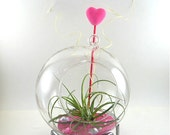 Pink Heart Hanging Terrarium // Globe Extra Large // Gifts for Her // Gifts under 25