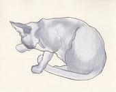 Bath Time I, cat, original pencil charcoal drawing, 8 x 10