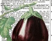 Eggplant SQUARE Dictionary Art Print, Original Design, FREE SHIPPING