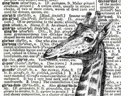 Giraffe SQUARE Dictionary Art Print, Original Design, FREE SHIPPING