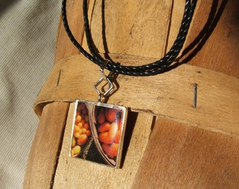 Tomato Photo Necklace - Garden Gems