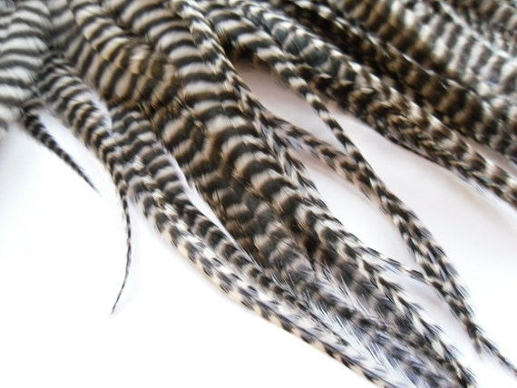 Thick Grizzly Feathers for Hair Extensions, Qty 3