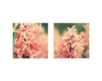Pink Hyacinth Photo Print Set, Shabby Chic Floral Photography, Mint Green Blush Flower Art, Home Decor Wall Art Bedroom Bathroom