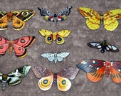 Moth Magnets Wholesale Lot of 10 by Doug Walpus