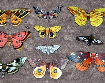 Moth Magnets Set of 10 Insects Multi Color Gifts Refrigerator Magnets Kitchen Decor Home Decor 2-6 inches bedroom Decor Bathroom Decor
