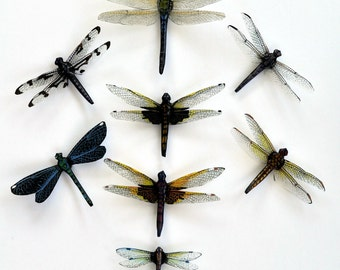 Dragonfly Magnets Clear wings Set of 8 Refrigerator Magnets Insects Handmade Kitchen Decor Home Decor Multi Color Wing Span 3-6