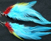Colorful feather earrings E0009