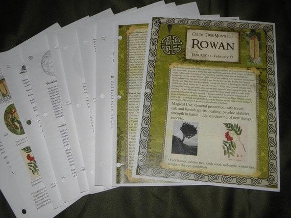 Celtic Tree Calendar Series: Rowan Month Jan 21-Feb.17