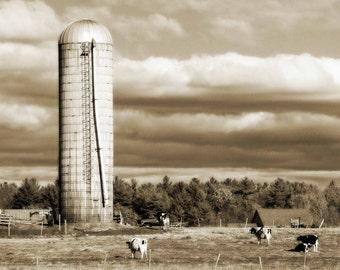 Silos Golden Sepia Cows Cloudy Sky Landscape Farmhouse Decor Rustic Warm Simple Style Farm Country,  Fine Art Print