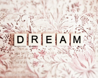 Love Dream Pastel Pink White Paisley Nursery Decor Dreamy Pastel Pink Inspirational Quote Home Decor Large Wall Art, Word Art Print