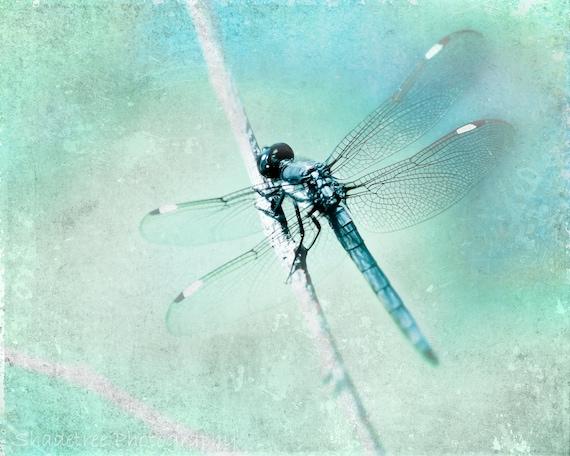 Dragonfly Blue Teal Aqua Whimsical Nature Botanical Dreamy Fairy Houses Bokeh Nursery Decor, Fine Art Print