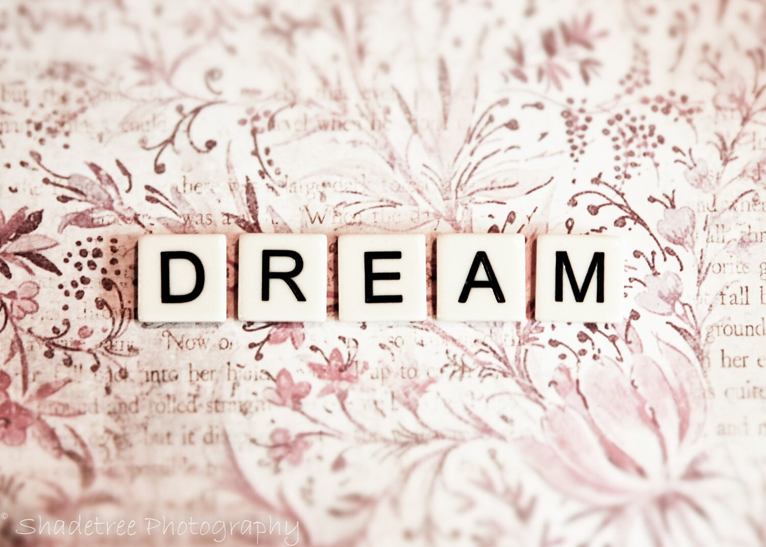 how to create what you want to dream about