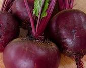 Beet - Detroit Dark Red - Heirloom - Organic - 30 Seeds