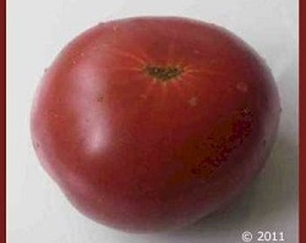 Tomato - Marizol Purple -  Heirloom - Very Early  20 Seeds Rare