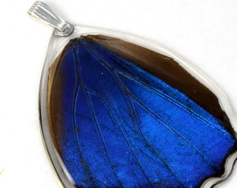 Real blue morpho butterfly pendant (bottom wing)
