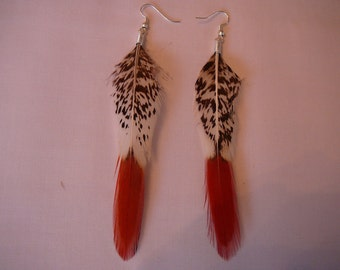 1   Fancy  Feather Earings Set ...........Accents to your Feather Hair Extension By The MyCollection2