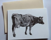 Cow Greeting Card, 2-Color Offset Printed
