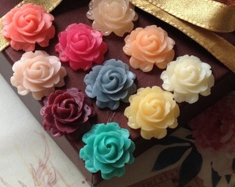 16 Pieces (8 Pairs) of 21 mm Cabbage Rose Resin Flower Cabochons of Assorted Colour (.nm)
