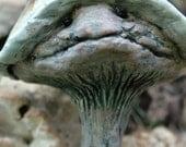 MushroomMinions - 4 piece set - Mushroom garden stakes
