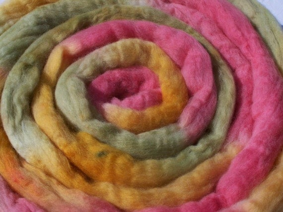 Hand dyed Polwarth combed top, roving, spinning fiber, 4 oz, 30% off sale