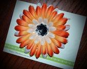 Orange and White Daisy Hair Clip