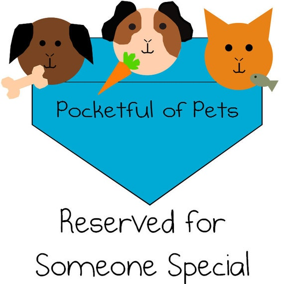 Reserved for Sherri- two 2x1 and two 2x3 Fleece Cage Liners for guinea pigs, hedgehogs, etc.
