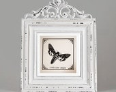 Romantic black butterfly screen-printed