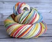 Listing reserved for tierragirl ----------------Vanilla Rainbow - Worsted Mountain Meadow - Yarn Loft