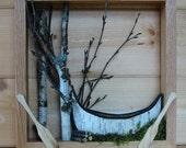 Framed Canoe Woodland Scene - Birch Bark Canoe, Paddles, Birch Twigs, Shadow Box, Urban Rustic