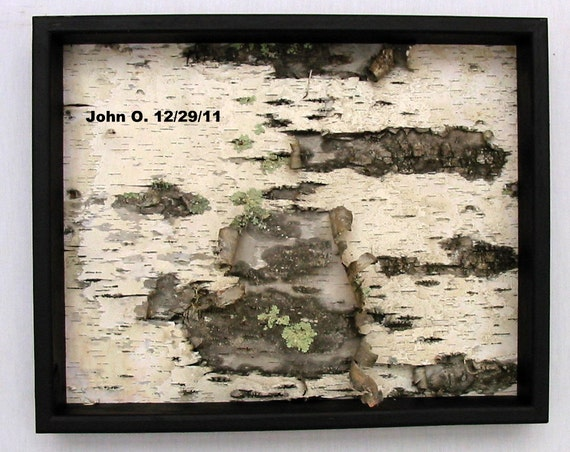 Framed Birch Bark Wall Hanging, Black and White, Rustic