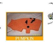 Halloween PUMPKIN Dog Sweater Pattern