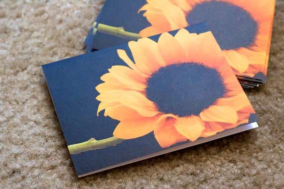 Sunflower Photo Cards -  Set of 5 floral blank folded note cards matte paper