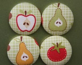 Fruity button magnets set of four