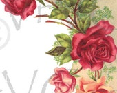 ShaBby Rose Corner Swag Flowers Digital Download Image Vintage French Postcard Clipart Art Graphic vs0072