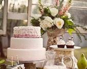 Mason Jar Wedding Favor - Eco Friendly - Party Favor