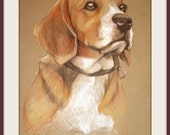 "Original Pet Portrait Color Pencil Drawing ""Buddy"" - 11"" X 15.5"" (Custom Pet Portraits)"
