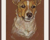 "Original Pencil Drawing ""Jack Russell Terrier"" Size: 11.5"" X 16.5"""