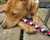 Braided Knotless Dog Bone (Red, White, Blue)