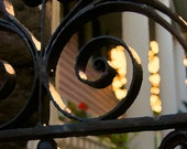Wrought Iron Gate in Historic Charleston, SC 8x10