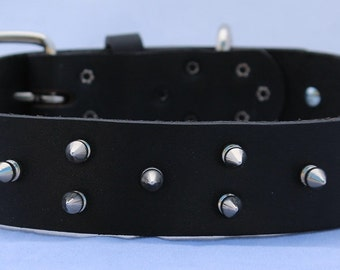 Black Leather Dog Collar with Spikes