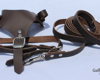 Small Leather Dark Brown Harness and Matching Leash