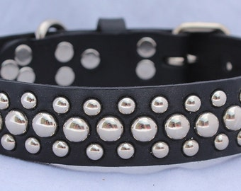 Wider Leather Dog Collar with Circle Studs