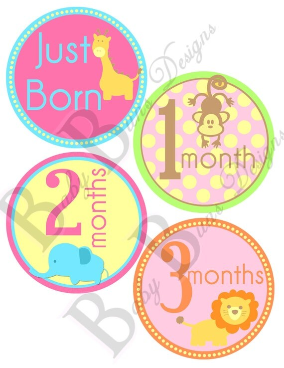 Baby Girl Animal Monthly Milestone Stickers- PRINTABLE- INSTANT DOWNLOAD