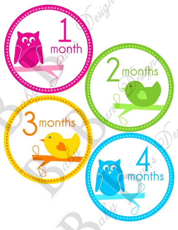 Baby Owl & Chick Monthly Milestone Stickers (also includes just born and holidays)- PRINTABLE- INSTANT DOWNLOAD