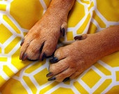 Large Dog Bed Cover, Yellow, White, Modern, Medium Dog Bed Duvet