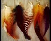 Single Feather Ear Cuff