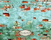 NEW ITEM 5ft x 4ft Vinyl Photography Backdrop / Red Blue Grunge Brick Wall